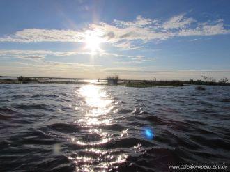 Viaje a los Esteros del Ibera 68