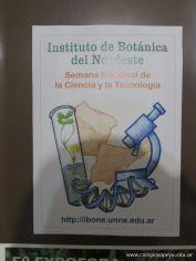 Visita al IBONE 15