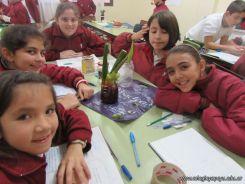 Plantas Acuaticas 10