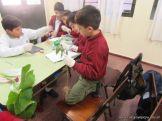 Plantas Acuaticas 4
