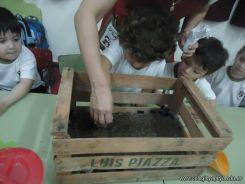 Plantamos 11