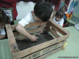 Plantamos 12