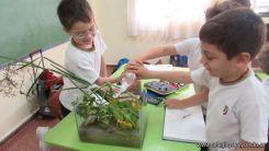2do grado con Plantas Acuaticas 11