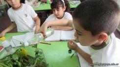 2do grado con Plantas Acuaticas 29