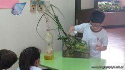 2do grado con Plantas Acuaticas 4