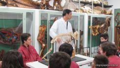 Visita a la Facultad de Veterinaria 5