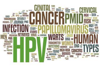 HPV 1