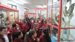 Visita al Museo de Ciencias Naturales 17