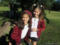 primavera-en-primaria