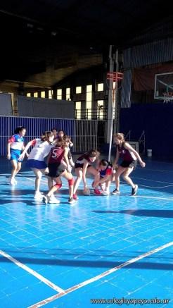 Torneo intercolegial de Cesto 14