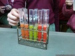 Determinación de vitamina C en jugos 12