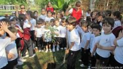 Día del árbol 7