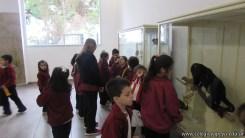 Visita al museo 47