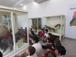 Visita al museo de Ciencias Naturales 51