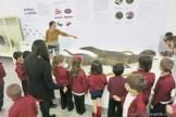 Visita al museo de Cs. Naturales 33