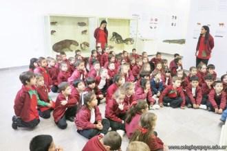 Visita al museo de Cs. Naturales 43