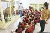 Visita al museo de Cs. Naturales 47