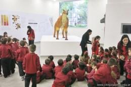Visita al museo de Cs. Naturales 6