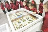 Visita al museo de Cs. Naturales 61
