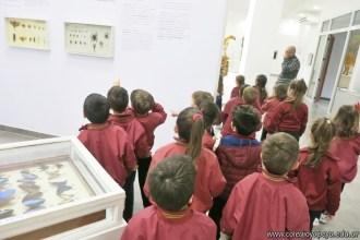 Visita al museo de Cs. Naturales 66