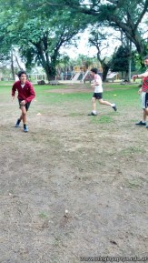 Rugby del ciclo básico 7