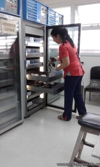 Visita al banco de sangre 6