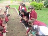 Actividades en el Campo de Alumnos de Sala de 4 años 15