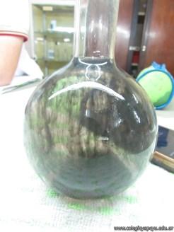 Velocidad de las reacciones químicas 17