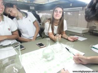 Velocidad de las reacciones químicas 7