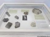 visita al museo Dr Amado Bonpland 3