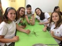 Reproducción asexual de vegetales 9