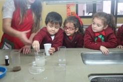 La potabilización del agua 19