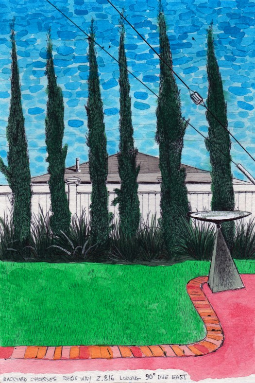 Backyard Cypresses, Regis Way 2.8.16 Looking 90 Degrees Due East 2016 Ink and Gouache on paper 8x5.5 inches