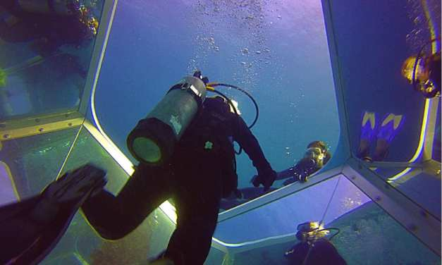 Taking the Plunge- Our First Solo Dive at Catalina