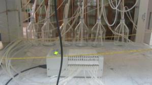 Ismatec® Multichannel Pump Syste