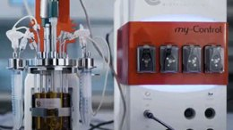 Applikon Biotechnology miniBio Bioreactor with Masterflex Miniflex pump head.