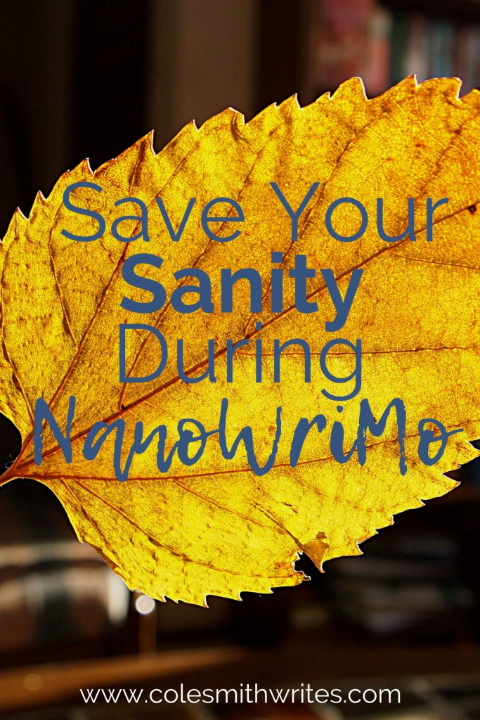 How do you save your sanity during NaNoWriMo? #authors #readers #writers #nanowrimotips #writingtips