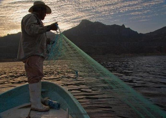 pescador manzanillo