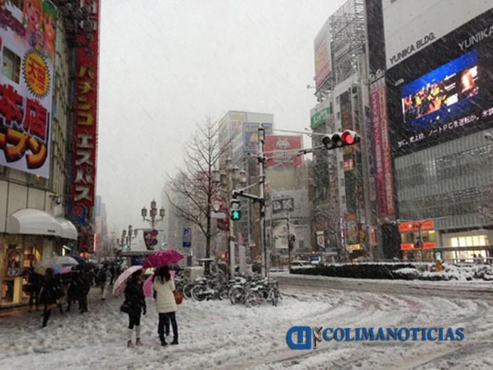tokyo-temporal-nieve-japonshop