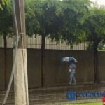peaton lluvia paraguas
