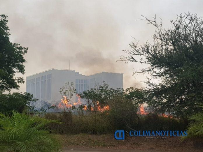Incendio 3 696x522 - Reportan incendio fuera de control en Camino Real