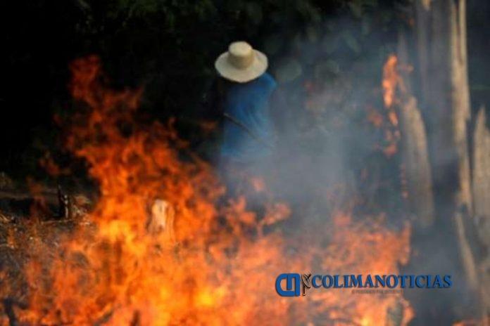 Incendios en el Amazonas. Foto  Reuters  696x464 - La selva del Amazonas arde a una velocidad récord