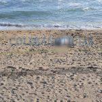 ahogado en manzanillo 150x150 - Sale a flote cuerpo de menor devorado ayer por el mar