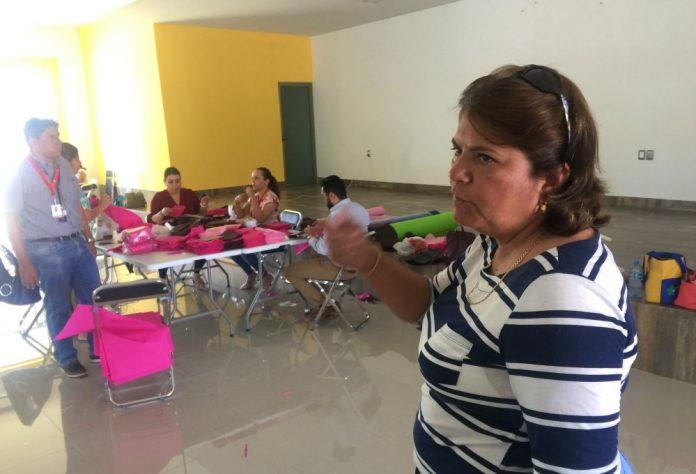 dolores gonzalez meza 696x474 - González Meza exige a autoridades insumos necesarios para trabajadores de salud en Colima contra Covid-19