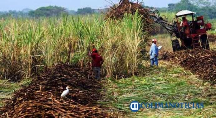 Entrega Sader 18.9 mdp a pequeños productores
