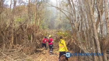 Sofocan incendio de pastizales en el Barrio V del Valle de las Garzas6