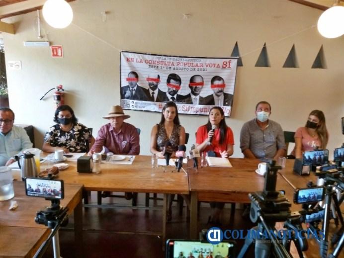 Indira Vizcaíno, Rosi Bayardo y cinco organizaciones convocan a participar en Consulta Popular