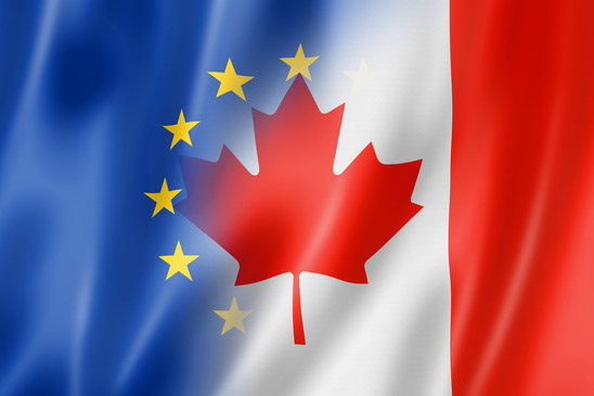 The Schrems II decision: Implications and challenges for Canada