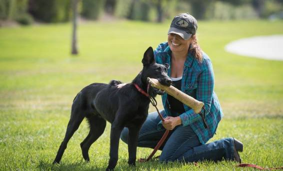 Dog Trainer Meagan Karnes with Black Malinois
