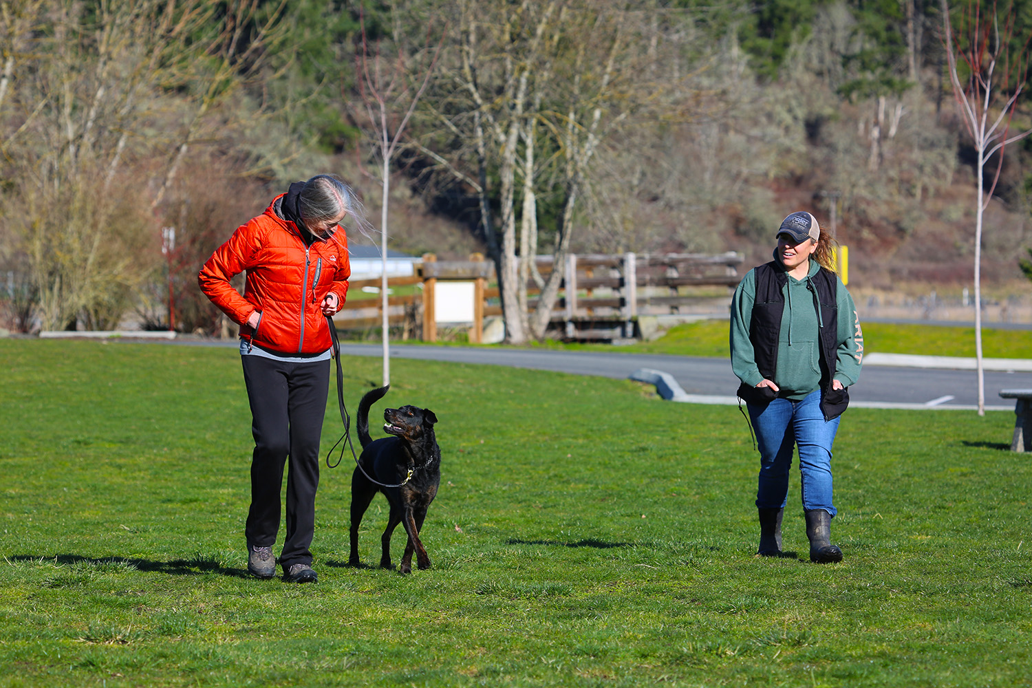 Inside Out: One Dog's Journey overcoming Reactivity